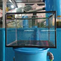 Akuarium Nikita Size L 40x25x28 25l Grab/Gojek only