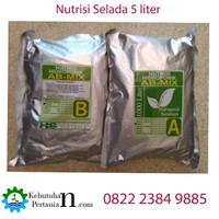 Nutrisi Selada