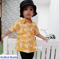 Baju Batik Anak Laki Kemeja Batik Anak Modern Kekinian Usia 1-14 tahun