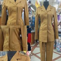 Blazer Baju Seragam Pemda PNS Kantor Wanita Cewek Kerah Jas Panjang