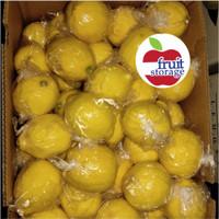 Lemon China Import 1kg / 1 dus