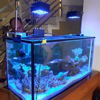 lampu akuarium laut prototipe baru by pm