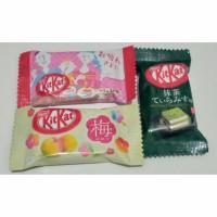 KITKAT MATCHA TIRAMISU / KIT KAT MINI PLUM / KITKAT MINI CAFE LATTE