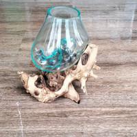 aquarium cupang - aqurium mini - wooden glass