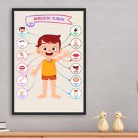 Poster ANGGOTA TUBUH Pendidikan Anak TK PAUD SD Bilingual Dua Bahasa