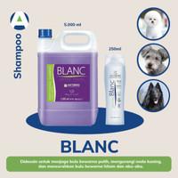 Artero Blanc Shampoo 250ml