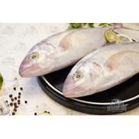 Ikan Kuwe Lilin | Fresh Frozen & Segar
