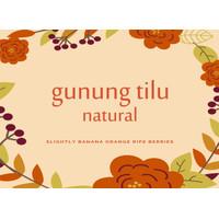 GUNUNG TILU NATURAL - Kopi Jawa Barat, Single Origin Arabica