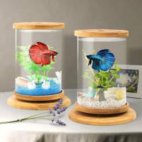 Desktop Aquarium Kaca Ikan Cupang Mini / Akuarium Mini Import 3