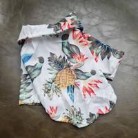 Baju Kostum Kemeja Pantai Anjing Kucing Cat Dog Hewan XS S M L XL XXL