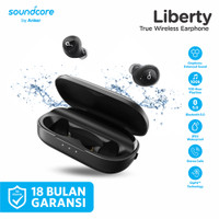 Soundcore Liberty True Wireless Earphones with Charging Case A3912