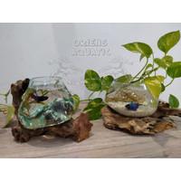 Aquarium Tiup/Vas Bunga untuk Cupang/Guppy/Terrarium - Size M