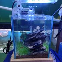 Aquascape Mini Full Set Aquarium Cupang