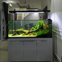 aquarium aquascape full set 150cm