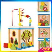 RB-M65 Mainan Edukasi Anak Puzzle Kayu Intelligence / Wisdom Box Busy
