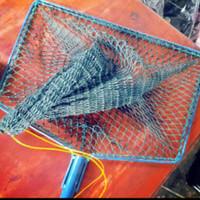 Serok Ikan Konsumsi Brojol Bahan Kuat/ Jaring ikan / Siruk ikan lele