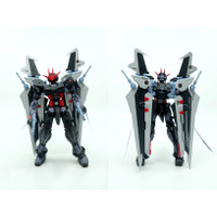 Item884 Limited 1/100 MG Astray Noir (Repaint)