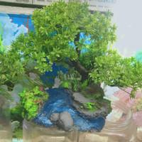 Bonsai Aquascape Sintetis Murah