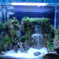 Aquarium Aquascape Full Set Design Tema Water Fall #1