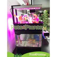 Indoor Aquaponic System - Acrylic Aquarium + LED Grow Light Hydroponic