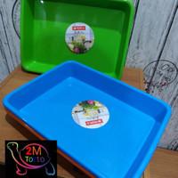 BAK RENDAM BABY TORTOISE/KURA DARAT