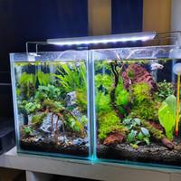 aquarium aquascape full set paket 2 unit masing masing @20x20x25 cm