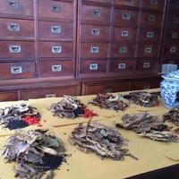 Herbal Batu Ginjal - Ramuan Sinshe - Obat Tradisional China - Terbukti
