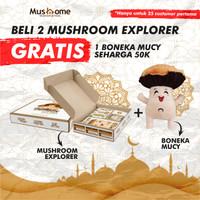 Paket Parcel Lebaran / Mushome explorer BONUS BONEKA