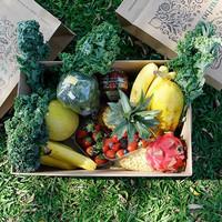Hampers Buah & Sayur (Custom)