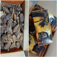 Kurma Tunisia Arafa 500gr / Kurma Tangkai ( Mirip Palm Fruit / Frutt )