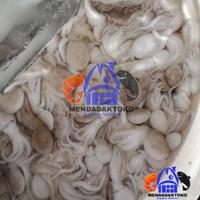 baby gurita segar | seafood | hasil laut 9
