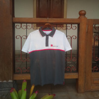 Polo shirt SAUBER F1 TEAM OFFICIAL not Norton bmw Lamborghini Ferrari