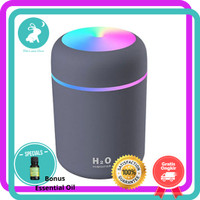 Kesoto Air Humidifier Mobil Aromatherapy Oil Diffuser LED Light 300ml