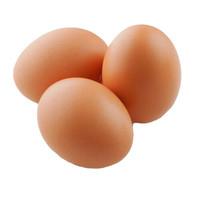 Sayurbox Telur Ayam Negeri Curah (15-17pcs/kg)
