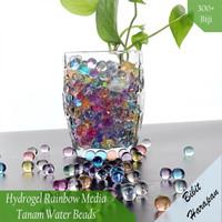 Hidrogel Hydrogel Rainbow Media Tanam Water Beads 5 Grams
