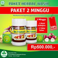 Obat Wasir Ambeien Pria Dan Wanita Herbal Denature Paket 2 Minggu