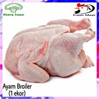 Ayam Potong Broiler Karkas Utuh Segar 1 ekor