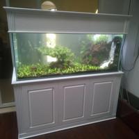 aquarium aquascape full set 150 cm