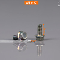 BAUT FOOTSTEP 8x17 (flange bolt)/Baud foot step atv/pustep motor/unive