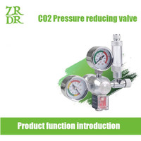 Regulator CO2 Solenoid Valve + Bubble Counter D01-14 WYIN ZRDR