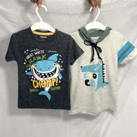 Kaos Baju Anak Laki Premium Gymboree Carter