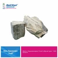 Batu Aquascape Fosil Per 100 Gram