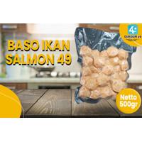 BASO IKAN SALMON 49 500 GR ISI 30PCS