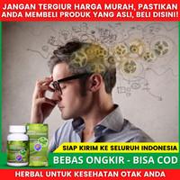 Obat Herbal Alzheimer - Epilepsi - Kejang - Fertigo - Insomnia Stroke
