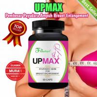 Pembesar Payudara Upmax Breast Enlargement Ayurvedic Herbal Terbaik
