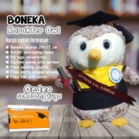 Boneka Wisuda Owl / Burung Hantu