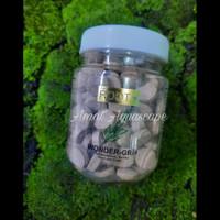 Pupuk Tancap Aquascape | Wonder Grow Root