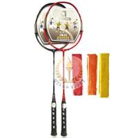 Raket Olahraga Badminton / Bulutangkis Apacs RV Ziggler Power Original