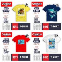 Kaos Anak Laki-Laki Remaja Tanggung 8 10 12 14 16 T T-shirt Harian