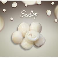 Scallop Import 250gr